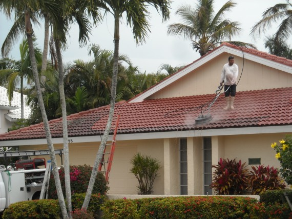 Roof Maintenance - Cleaning